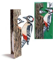 Great spotted woodpeckers