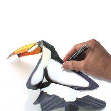 3D-Grusskarte Tukan