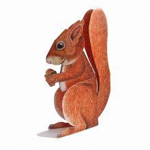 3D-Grusskarte Eichhörnchen