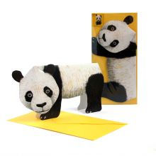 3D-Grusskarte Pandabär