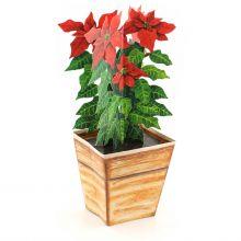 3D-Weihnachtskarte Christstern