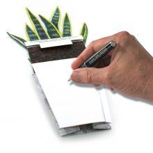 3D-Grusskarte Sansevieria