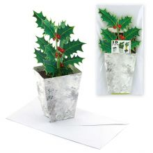 3D Greeting Card Ilex