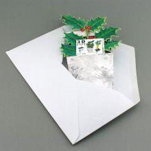 3D-Grusskarte Ilex