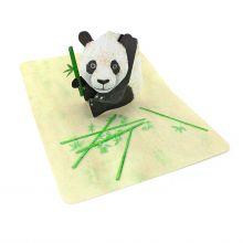 Pop-up-Karte Pandabär